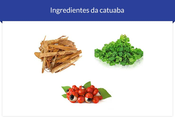 Ingredientes da Catuaba