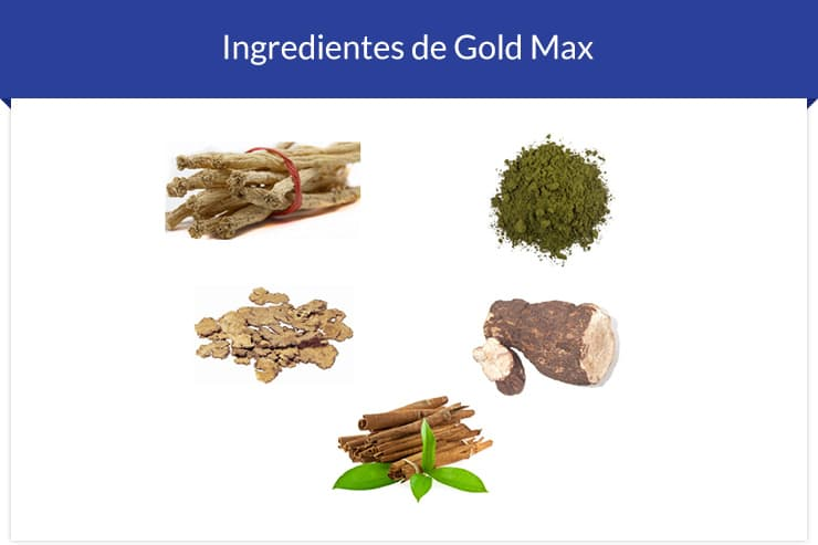 Ingredientes do Gold Max
