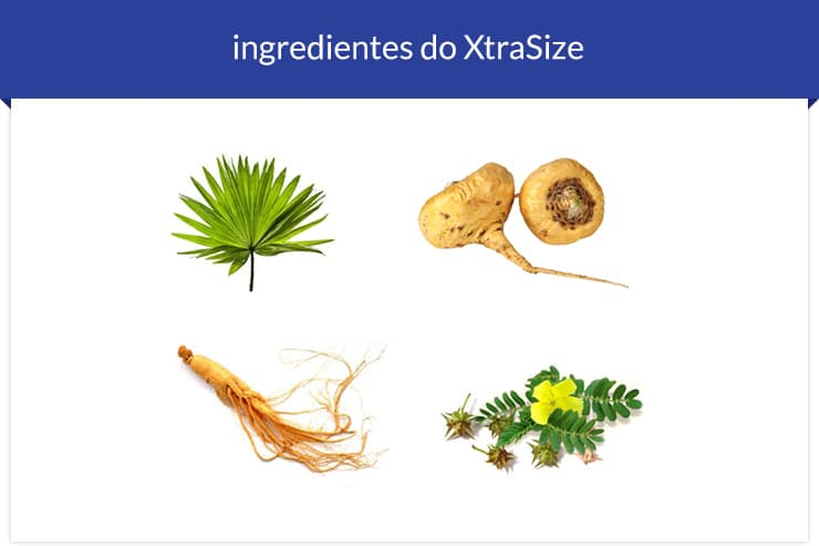 ingredientes-do-xtrasize