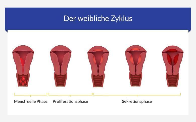 Pille schmierblutung vor periode Schmierblutung statt