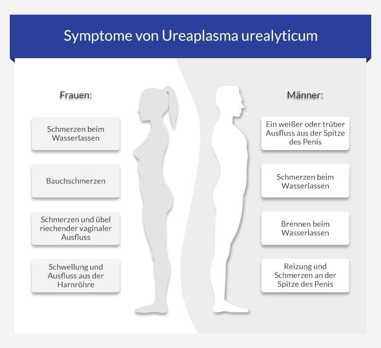 Ureaplasma   Symptome und Therapie auf euroClinix