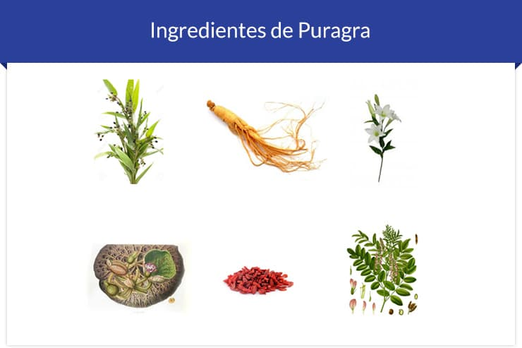 ingredientes-de-puragra