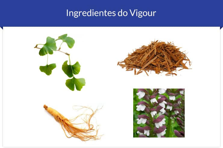 ingredientes-do-vigour
